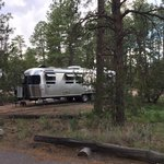 Juniper family campground