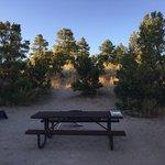 Juniper family campground