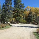 Junebug campground