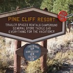 Pine cliff resort