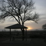 Oasis state park