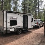 Quaking aspen campground cibola nf