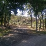 Rye patch state park