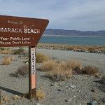 Tamarack beach walker lake