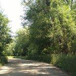 Box elder campground