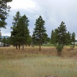 Canyon rim campground