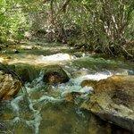 Clear creek utah