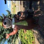 Jellystone park missoula