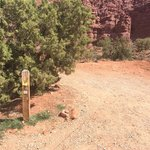 Fisher towers campground