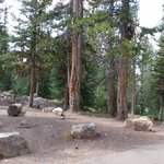 Lilly lake campground