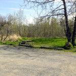 Steelhead campground
