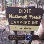 Oak grove campground dixie nf