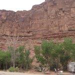 Williams bottom campground