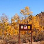 Laurel springs campground