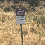 Billy creek state wildlife area