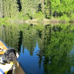 Dolly varden lake campground