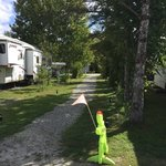 Shelburne camping area