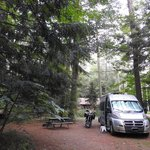 Tree farm campground