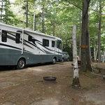 Timberland camping