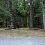 Bar harbor campground