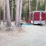 Cathedral pines campground