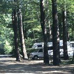 Pine campgrounds