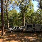 Cape ann camp site