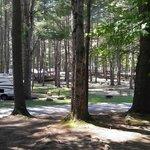 Ledgeview village rv park