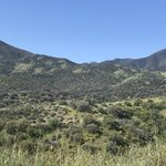 Aliso park campground