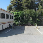 Seacliff center trailer park