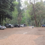 Riverside campground cabins