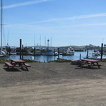 Porto bodega marina rv park
