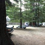 Redwood resort rv park and campground