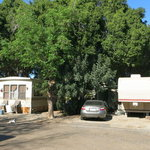 Palm lane rv park