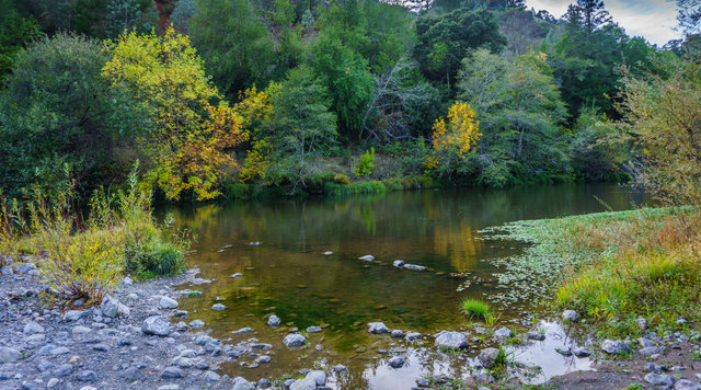 Russian river thousand trails