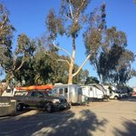 Surf and turf rv park