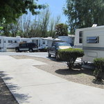 The garlic farm rv park