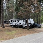 Orchard springs campground