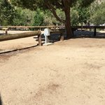Frandy park