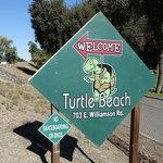 Turtle beach rv resort