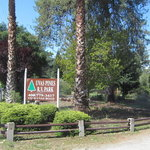Uvas pines rv park