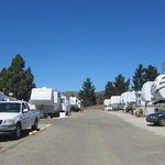 Bay pines travel trailer park