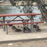 Reflection lake rv park