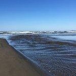 Heceta beach rv park