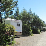 Heceta beach rv park