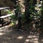 Tucker park campground