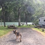 Coyote rock rv resort and marina