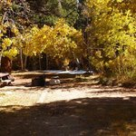 Bishop park campground
