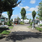 Premier rv resort salem