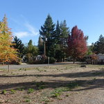 Umpqua safari rv park